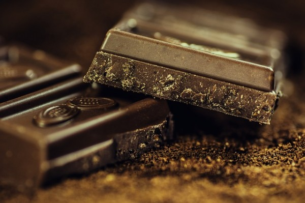 chocolate 14 things you should NEVER feed your dogs