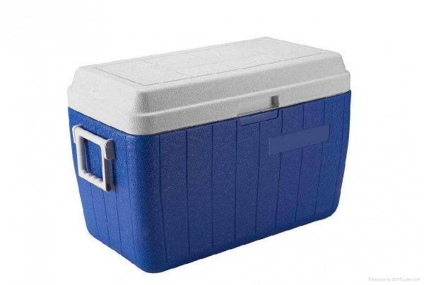 coolerbox 30 realistic things you should own at 30