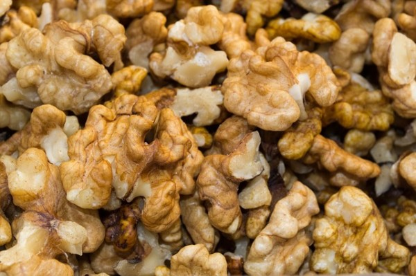 walnuts 14 things you should NEVER feed your dogs
